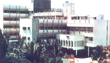 Hotel Palmgrove